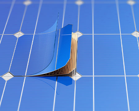 photovoltaics solar cell back sheet